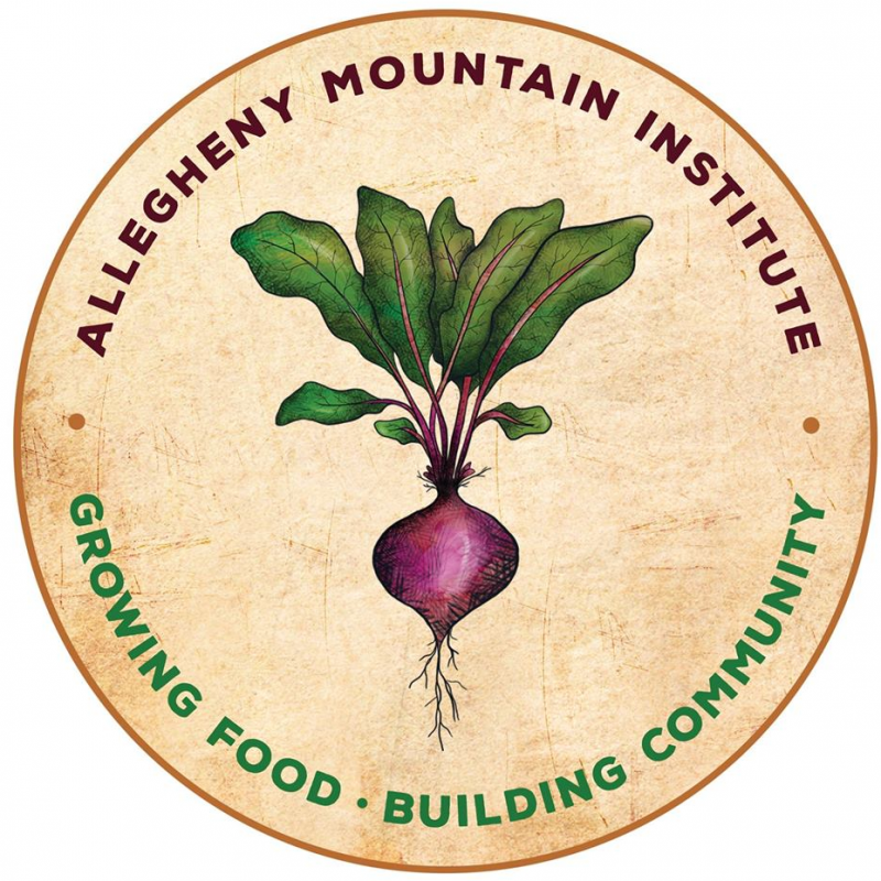 Allegheny Mountain Institute Fellowship